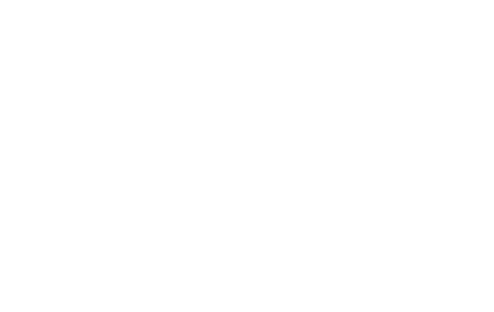 Tui - JDLsourcing